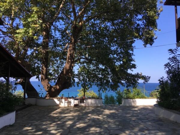 olymposhotel_platanos