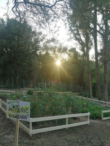 _botanic garden_resized