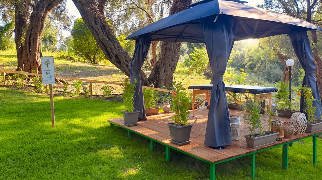 olive tree spa 2-2